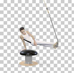 Pommel Horses Artistic Gymnastics Janssen-Fritsen Balance Beam PNG