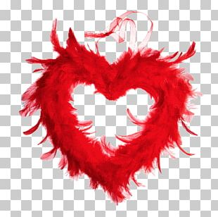 Feather Boa Red Amiens Color PNG