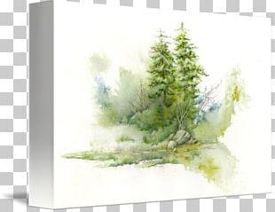 Watercolor Painting Watercolor Landscape Landscape Painting Art PNG