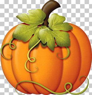 Autumn Pumpkin Thanksgiving PNG
