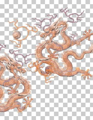 China Chinese Dragon Illustration PNG