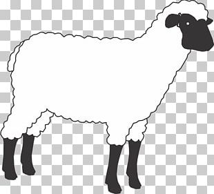 Sheep Cattle Horse Goat Mammal PNG