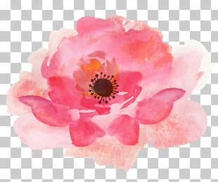 Watercolour Flowers Watercolor Painting Floral Design PNG