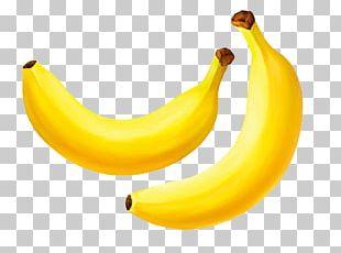 Banana Cartoon Auglis Illustration PNG