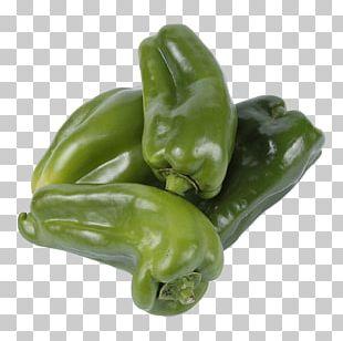 Bell Pepper Poblano Jalapeño Pasilla Serrano Pepper PNG