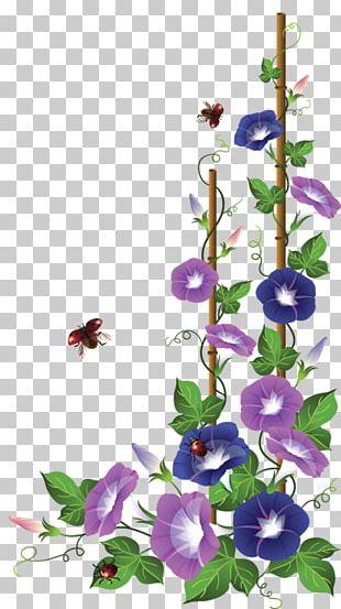 Floral Design Flower Frames Paper PNG