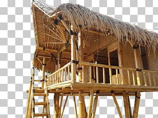 Hut Bungalow House Bamboo Construction Tropical Woody Bamboos PNG