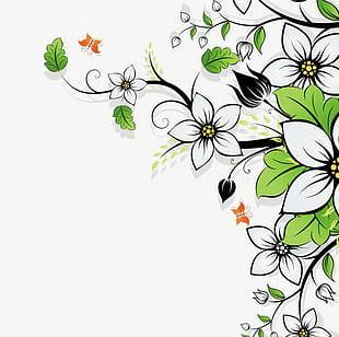 Beautiful Flowers Background PNG