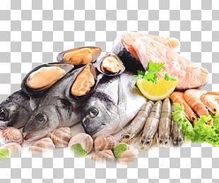Seafood Fish As Food Sashimi Frozen Food PNG