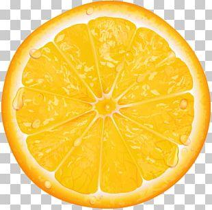 Lemon Orange Slice PNG