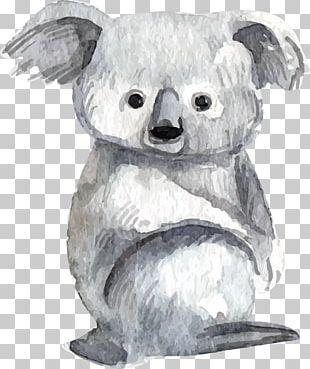 Baby Koalas Lemur Bear Watercolor Painting PNG