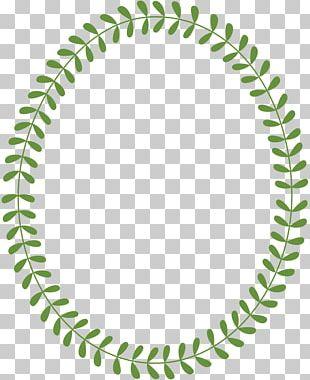 Bay Laurel Circle Laurel Wreath Leaf PNG