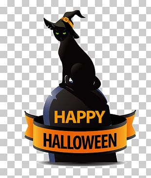 Black Cat Halloween Costume PNG
