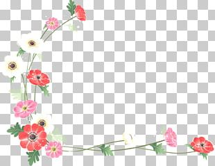 Borders And Frames Flower Watercolor Painting PNG