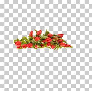 Flower Bouquet Desktop PNG