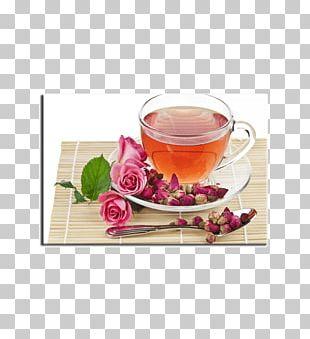 Flowering Tea Beach Rose Drinking PNG