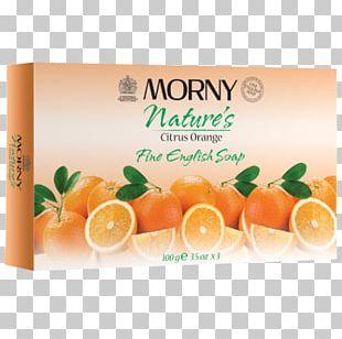 Clementine Orange Tangerine Tangelo Rangpur PNG