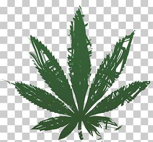 Medical Cannabis Hemp Tetrahydrocannabinol PNG