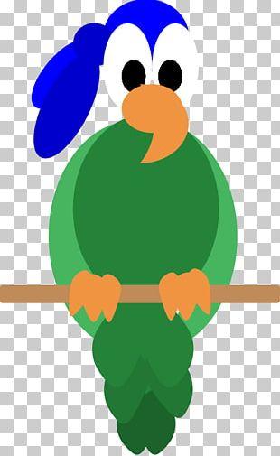 Bird Beak PNG