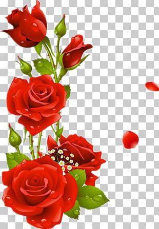 Borders And Frames Flower Rose Frame PNG