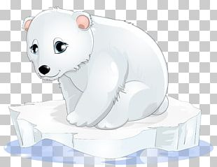 Polar Bear Cartoon PNG