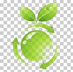 Environmentally Friendly Ecodesign Natural Environment Product Life-cycle Management PNG