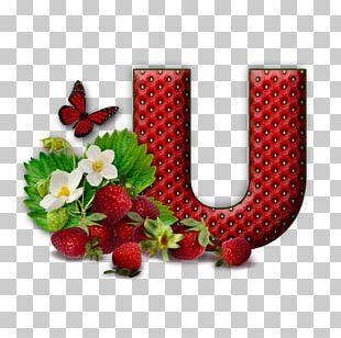 Letter Alphabet Flower M U PNG