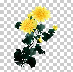 Chrysanthemum Indicum Flower Diding Plum Blossom Four Gentlemen PNG