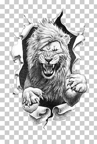 Lion Drawing PNG