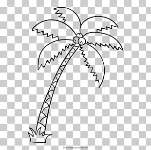 Really Big Coloring Books Drawing Arecaceae PNG