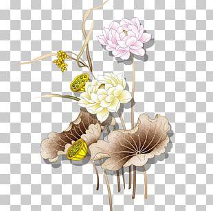 Nelumbo Nucifera Tianshui U611bu84eeu8aaa Lotus Effect PNG