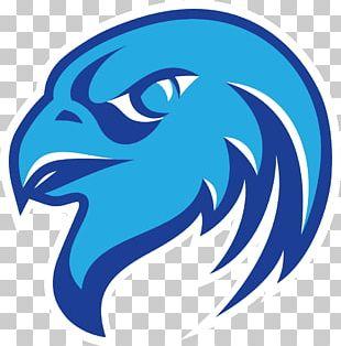Atlanta Falcons Logo PNG
