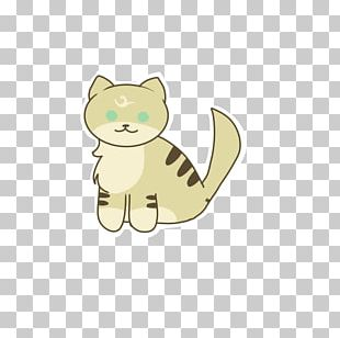 Kitten Whiskers Cat Canidae Dog PNG