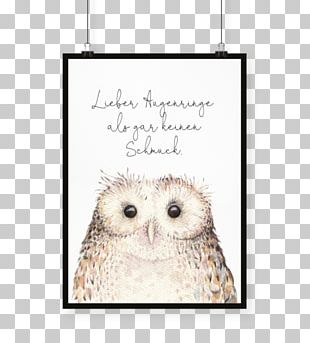 Owl Stock Photography Watercolor Painting PNG