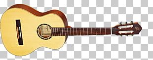 Cort Guitars Musical Instruments Acoustic-electric Guitar Steel-string Acoustic Guitar PNG