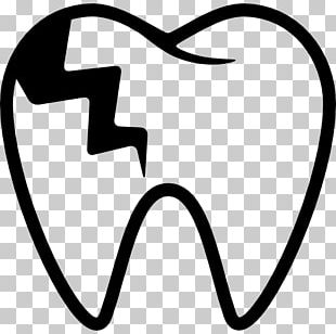 Tooth Decay Dentistry Human Tooth PNG