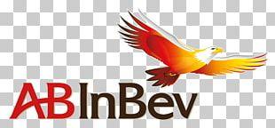 Anheuser-Busch InBev Logo Beer PNG