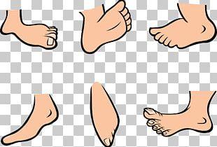 Foot Cartoon PNG