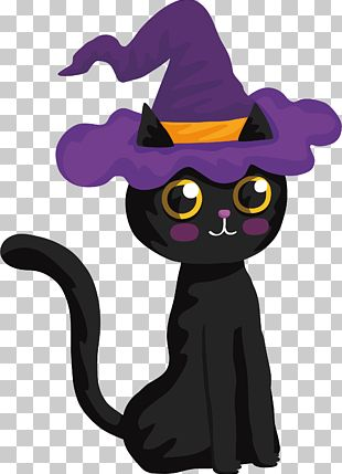 Black Cat Halloween Witch PNG