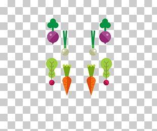 Carrot Radish Drawing Computer File PNG