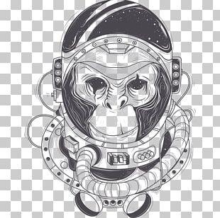 Chimpanzee Astronaut Drawing PNG