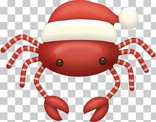 Santa Claus Crab Christmas Ornament Candy Cane PNG