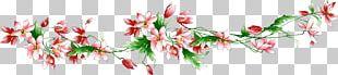 Flower Text Petal Plant Stem PNG