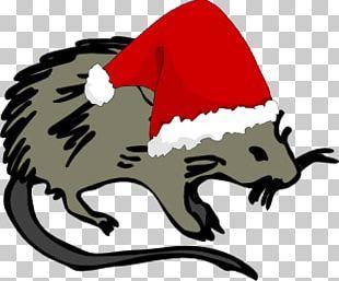 Laboratory Rat Mouse Black Death Rodent PNG