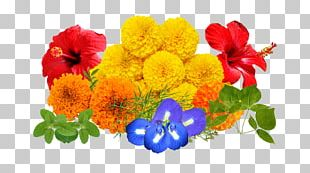 Cut Flowers Floral Design Floristry Flower Bouquet PNG