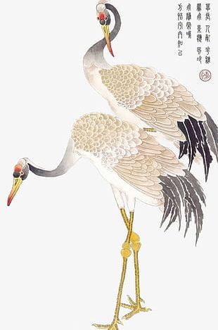 Ink Red-crowned Crane PNG