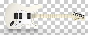 Acoustic-electric Guitar Fender Stratocaster Fender Musical Instruments Corporation Jim Root Telecaster PNG