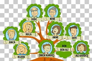 Genealogy Family Tree Nuclear Family Extended Family PNG