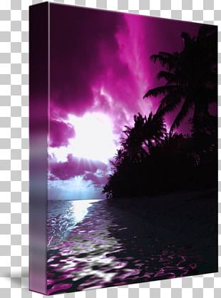 Gallery Wrap Canvas Hawaii Art Bring It On PNG
