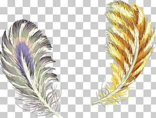 Feather Samsung Galaxy Color Gold PNG
